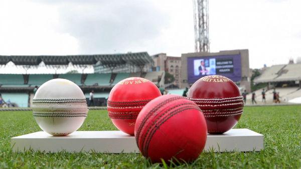 ક્રિકેટમાં વપરાતી રેડ અને પિંક બોલમાં શું ફરક છે? જાણો