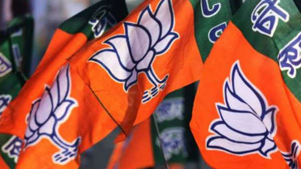 Jharkhand Assembly Elections 2019: ભાજપે પાંચમી યાદી જાહેર કરી, 8 ઉમેદવારનો નામનું એલાન
