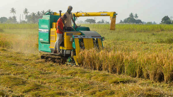 India Has Become Self Sufficient In Agriculture And Food Security In The Last 20 Years