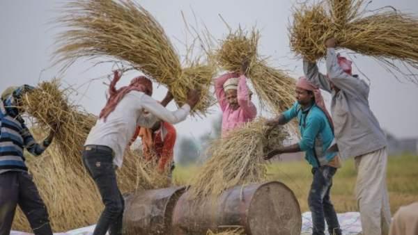 ભારત બન્યુ દુનિયાની પાંચમી મોટી અર્થવ્યવસ્થા, બ્રિટન-ફ્રાંસને છોડ્યુ પાછળઃ રિપોર્ટ