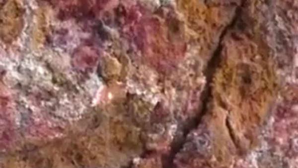 આ પણ વાંચોઃ મંગળ ગ્રહ જેવી કચ્છની જમીનના સંશોધનથી શું મળશે? ભૂસ્તરશાસ્ત્રીએ કહી મહત્વની વાત