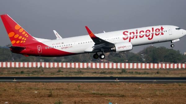 વિમાનોના ટેકઓફ અને લેન્ડિંગમાં માટે ખતરો બની શકે છે તીડ: DGCA
