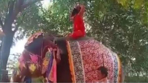 Video: હાથી પર બેસીને યોગ કરતી વખતે પડ્યા બાબા રામદેવ, વીડિયો થયો વાયરલ