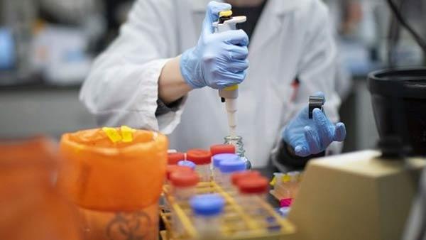 Pfizer કંપનીએ સફળ કોરોના વેક્સીન મળી ગઈ હોવાનો દાવો કર્યો