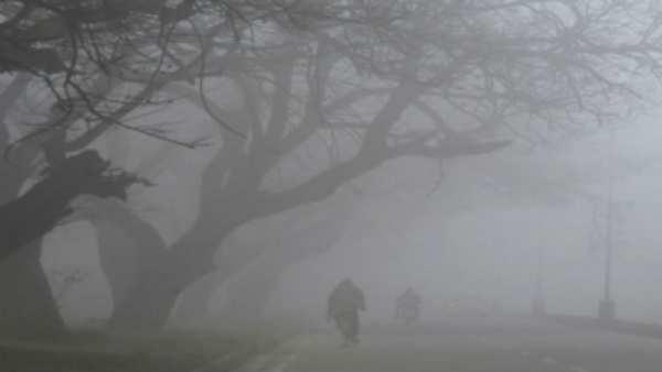 La-Ninaના કારણે આ વખતે પડશે હાડ ધ્રૂજાવી દેતી ઠંડી: IMD