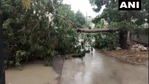 Cyclone Tauktae: વાવાઝોડા તૌકતેએ રાજ્યોમાં વેર્યો વિનાશ
