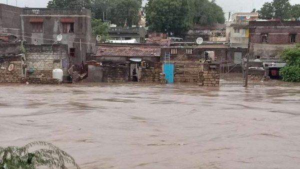 ગુજરાતમાં ભારે વરસાદ: નદી-નાળામાં ઉફાન, સૌરાષ્ટ્રના 10 ડેમ ઓવરફ્લો, પશુઓ ડુબ્યા