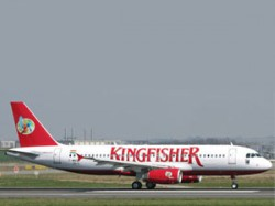 Kingfisher Flying Licence Cancelled
