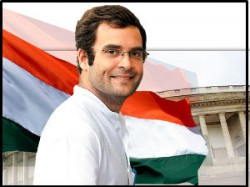 Rahul To Be Working President Of Congress