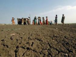 Nrega Scam In Gujarat Hand Of Bjp Leader