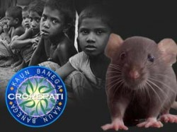 Kbc 6 Exclusive Village Where People Eat Rats