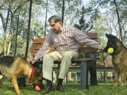 Ratan Tata Enjoying Life After His Retirement
