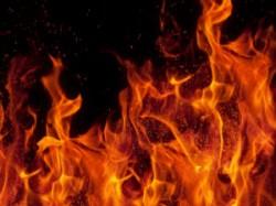 Rapist Burnt Alive Victim Bihar
