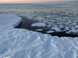 Russian Scientists Find New Life In Antarctic
