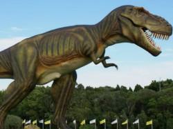 Australian Tycoon Builds Dinosaur Park