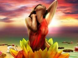 Hot Sherlyn Chopra Romance King Malkhan Kamasutra 3d