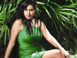 Actress Leena Maria Paul Arrested In Fraud Case