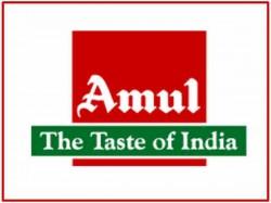 Amul Will Start Dairy Plant Near New Jersey