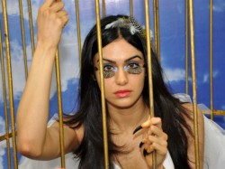Dont Cage Birds Let Them Fly Urges Adah Sharma