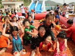 Photo South Korea Tometo Festival Starts From 21 June