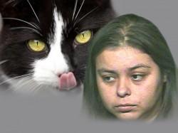 American Woman Threatens To Neighbor Over Cat Sex Rumor