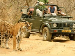 Indian Tourists Wants To Wander Alone