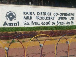 Amul Go Contrary From Its Founders Philosophy Of White Revolution