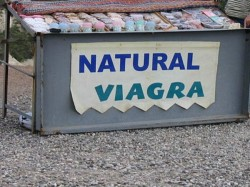 Viagra Doesn T Improve Relationships Said New Study