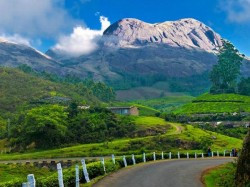 Travel Munnar This Season