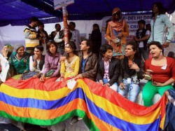 Government Files Plea Against Sc S Orders On Gay Sex Criminalisation