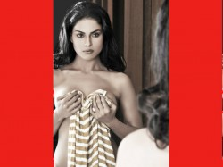 Veena Malik Will Not Work In Movies