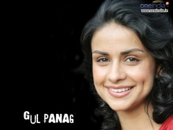 One More Parachute Leader Join Aap Gul Panag May Get Ticket 016628 Lse Pg