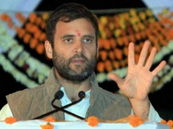 I Want Women Like Mary Kom In Parliament Said Rahul Gandhi Lse