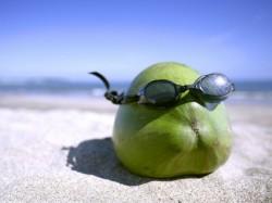 Health Benefits Of Green Coconut Water In Summer Seasone