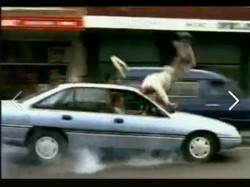 India On Top Number Road Accidents The World See Video Safe Drive