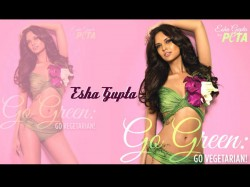 Humshakals Actress Esha Gupta Is Not Comfortable Doing Adult Comedy 018887 Pg