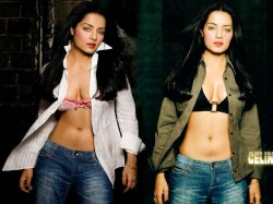 Gay Rights Music Video Celina Jaitly Is United Nations S Most Watched
