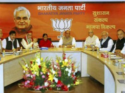 Advani Murli Manohar Joshi Are Not Included New Bjp Parliament Board