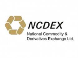 What Is Effect Of Ncdex To Levy Risk Management Fee On Fresh Open Position