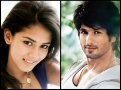 Things You Didn T Know About Shahid Kapoor Mira Rajput Love Story