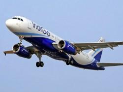 Indigo Bars Woman Short Dress From Flight