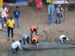 Pics Hrithik Roshan Shoots Crocodile Sequence For Mohenjo Daro