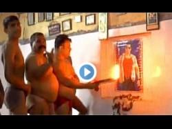 Watch Kanpur Pehalwans Worship Sultan Salman Khan