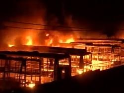 Woman Arsonist Set Afire 42 Buses Biryani Rs