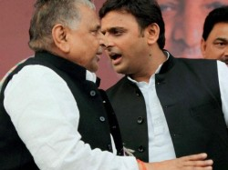 Up Cm Akhilesh Yadav Has Been Elected As National President