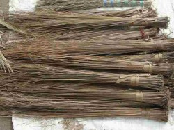 Why Is Goddess Lakshmi Related With Broom