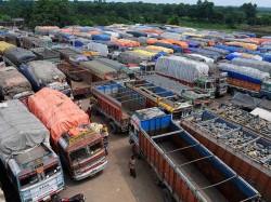 Tamil Nadu Transport Strike Affecting Gujarat Market