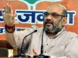 Mcd Election Will Help Bjp Gujarat How Read Here