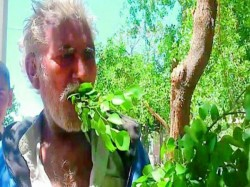 A Pakistani Man Has Been Living On Leaves Branches The Trees For The Past 25 Years