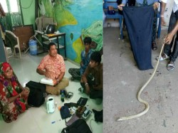 Vadodara Animal Rescue Team Caught Gang Who Is Selling Snake Poison